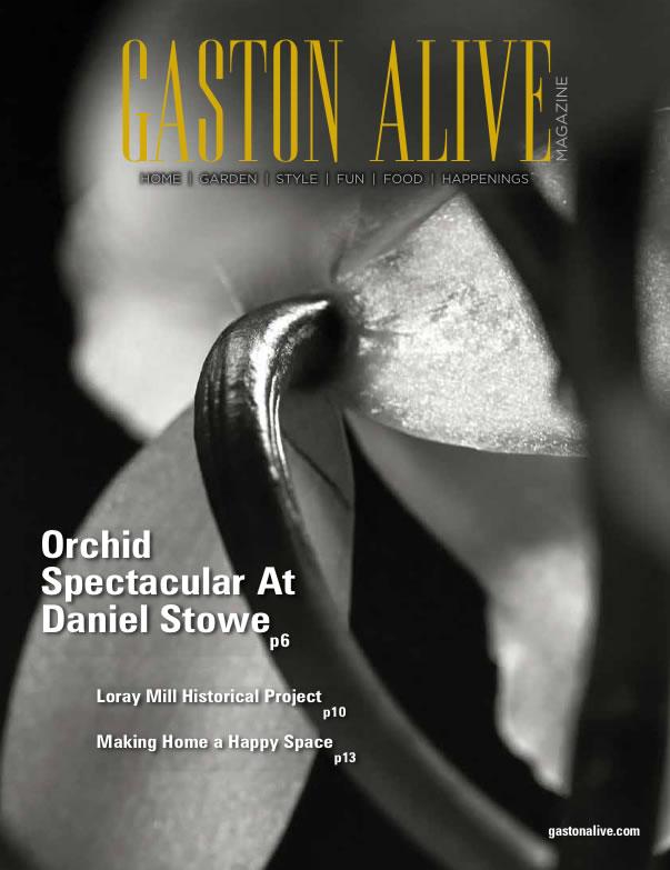 Gaston-Alive-February-2016-cover
