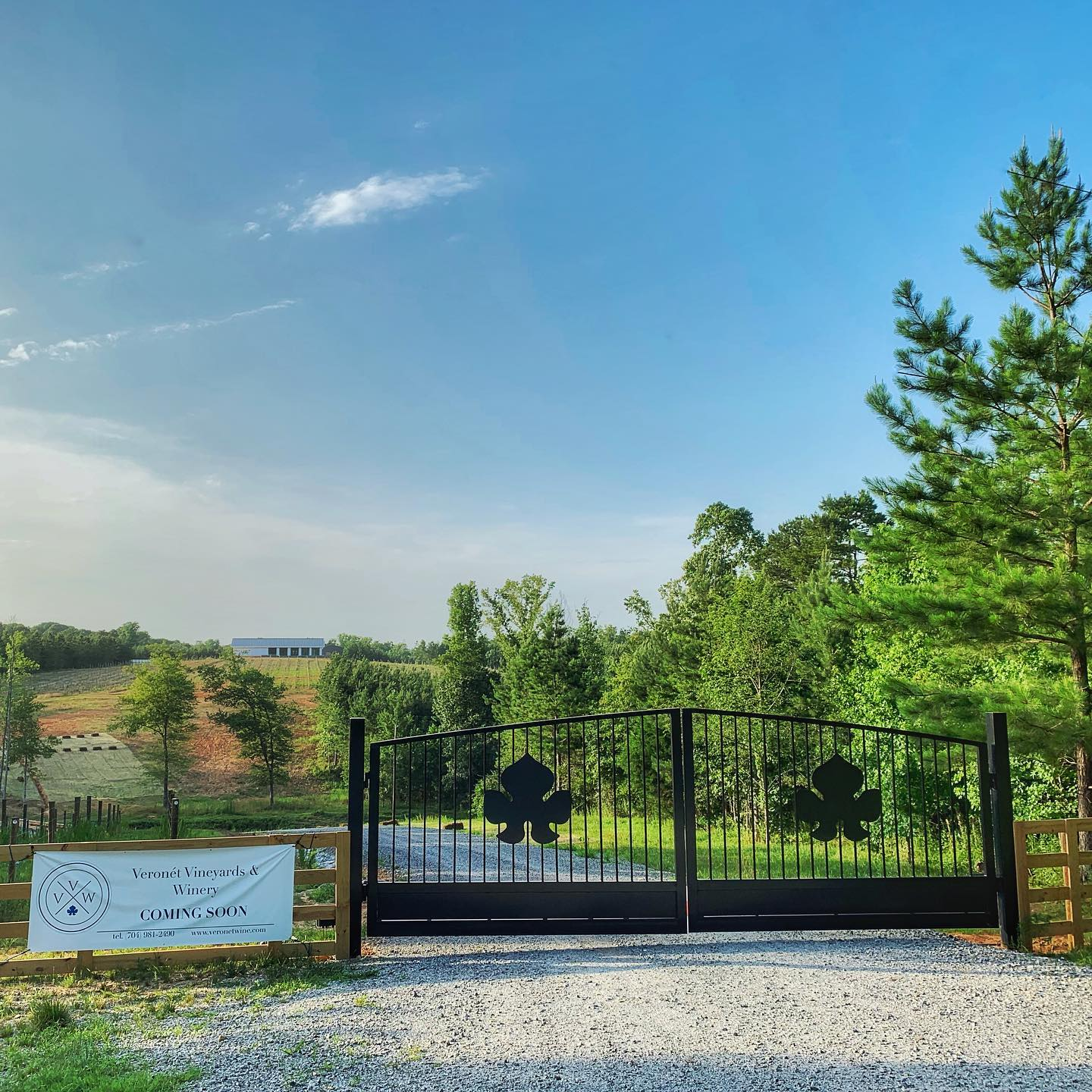 Veronét Vineyards & Winery, Vineyard Opening 10 Miles from Gastonia